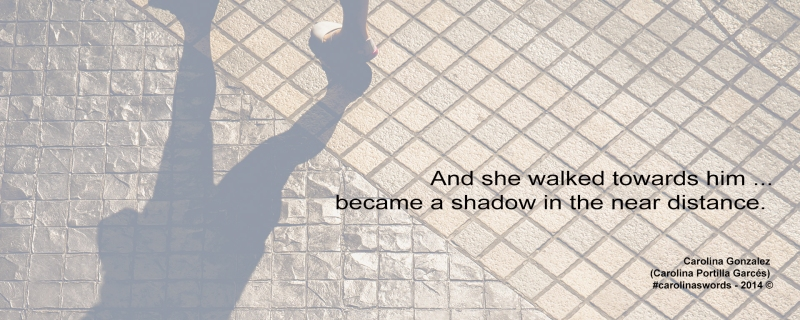 Shadow of a person walking outside
